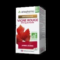 Arkogélules Vigne Rouge Bio Gélules Fl/45 à TOURCOING