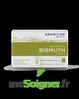 Granions De Bismuth 2 Mg/2 Ml S Buv 10amp/2ml à TOURCOING
