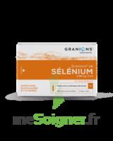 Granions De Selenium 0,96 Mg/2 Ml S Buv 30amp/2ml à TOURCOING
