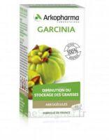 Arkogélules Garcinia Gélules Fl/45 à TOURCOING