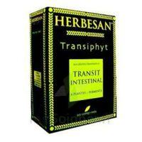 Herbesan Transiphyt, Bt 90 à TOURCOING