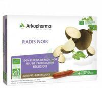 Arkofluide Bio Ultraextract Radis Noir Solution Buvable 20 Ampoules/10ml à TOURCOING