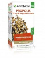Arkogélules Propolis Bio Gélules Fl/45 à TOURCOING