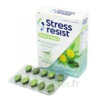 Stress Resist Comprimés Stress & Fatigue B/30 à TOURCOING