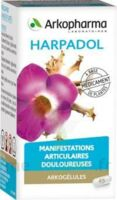 Arkogelules Harpagophyton Gélules Fl/150 à TOURCOING