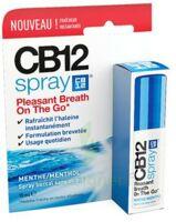 Cb 12 Spray Haleine Fraîche 15ml à TOURCOING
