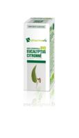 Huile Essentielle Bio Eucalyptus Citronné à TOURCOING