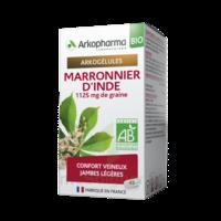Arkogélules Marronnier D'inde Bio Gélules Fl/45 à TOURCOING