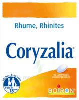 Boiron Coryzalia Comprimés Orodispersibles à TOURCOING